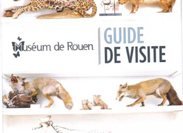 Le monde fascinant du muséum de Rouen