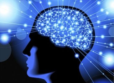 Muscle tes neurones à l'ESPGG !