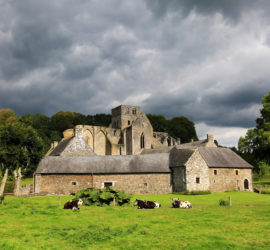 À la découverte de l'abbaye de Hambye !