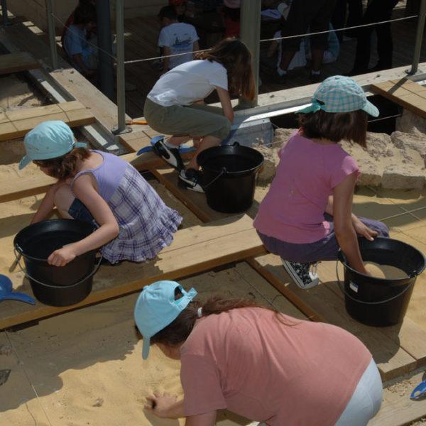 Vivre la Préhistoire au musée des tumulus de Bougon
