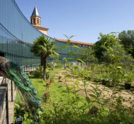 Explorons le Muséum de Toulouse en famille